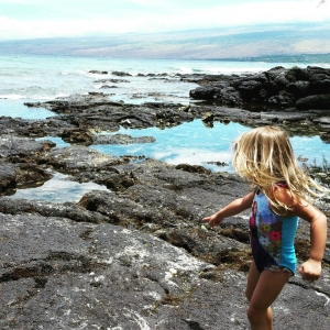 hawaii-lg